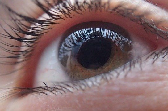 Glaucoma leading cause of blindness in Philippines